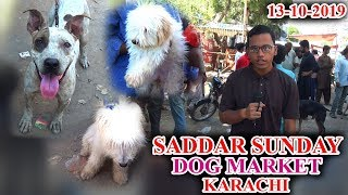 Saddar Sunday Dog and animal Market Karachi 13-10-19 Latest Updates JAIC In Urdu/Hindi