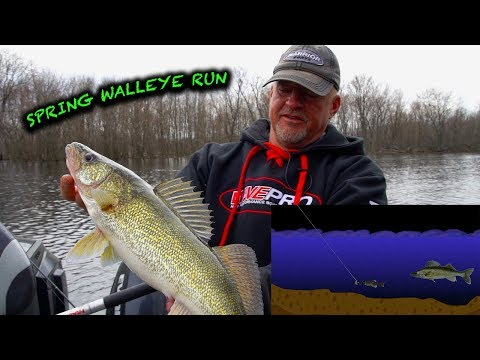 How To Catch Walleyes On The Wolf River (Tips And Tricks)