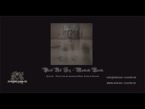Blood Red Fog - Mustasta Unesta (Preview Track)