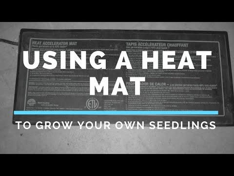 Using A Heat Mat To Start Seedlings Indoors