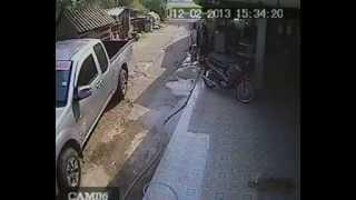 Repeat youtube video คลิปวิญญาณสุนัข จากกล้องวงจรปิด