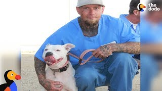 Shelter Dog and Prisoner Give Each Other A Second Chance | The Dodo