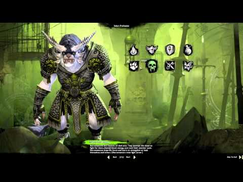 What is Guild Wars 2