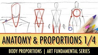 Art Fundamentals: Basic Anatomy & Proportions 1/4