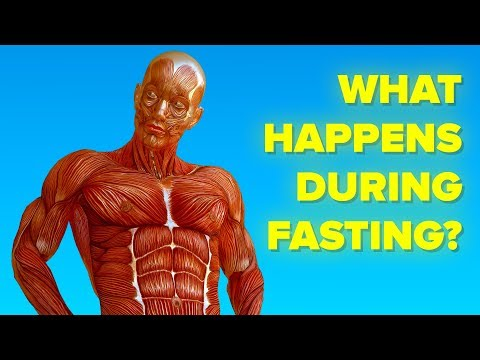 What Happens To Your Body When You Don't Eat (Fast)
