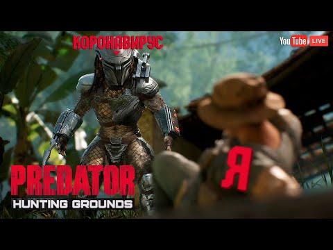 ХИЩНИК VS. ЧЕЛОВЕКИ. КТО СИЛЬНЕЕ ? Стрим игры Predator: Hunting Grounds