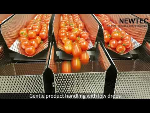 Weighing And Packing Of Small Cherry Tomatoes