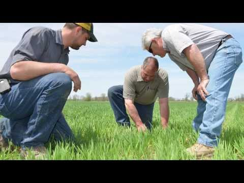 Upcoming CTIC cover crop project recognized by U.S. Secretary of Agriculture