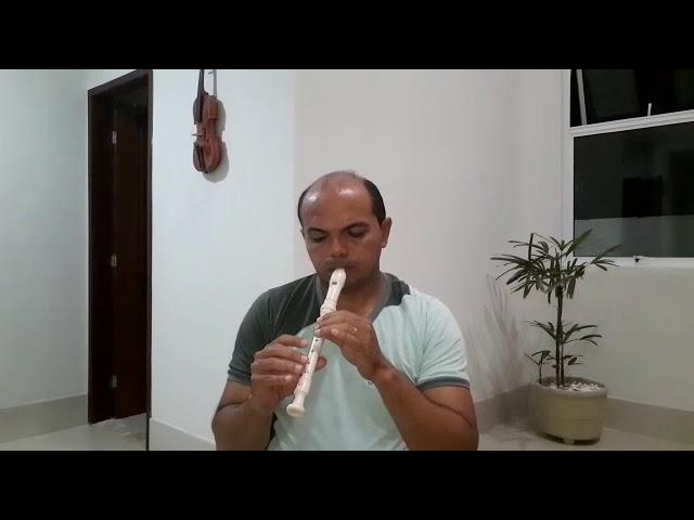 Orientador Luminescente Quefrem Leonel e a flauta doce
