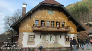 Cuckoo Clocks In The Black Forest Region