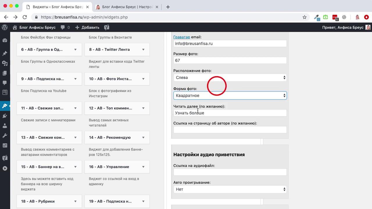 Как настроить виджет с текстовым, аудио, видео приветствием и контактами автора сайта на Wordpress
