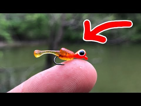 MICROSCOPIC Lure Challenge!!! (Surprising Results)