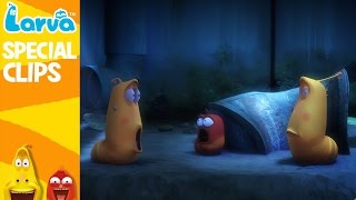 official larva weekly best - funny animation compilation - week 3 nov 2016