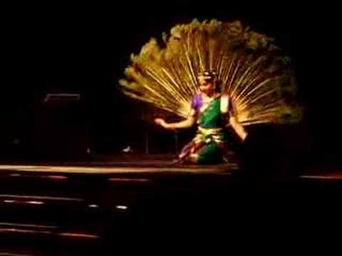 dance music and peacock Jarrett,keith/peacock,gary/dejohnette,jack - after the fall - cd - chartverfolgung - mp3 player - produkt kaufen bei abella, amazon, alphamusic, buecherde, bravado, jpcde.