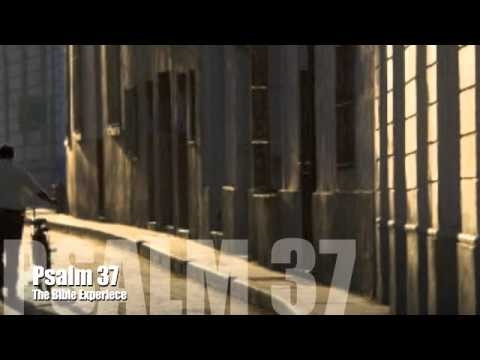 Psalm 37 - The Bible Experience - Dramatized Bible Reading - YouTube