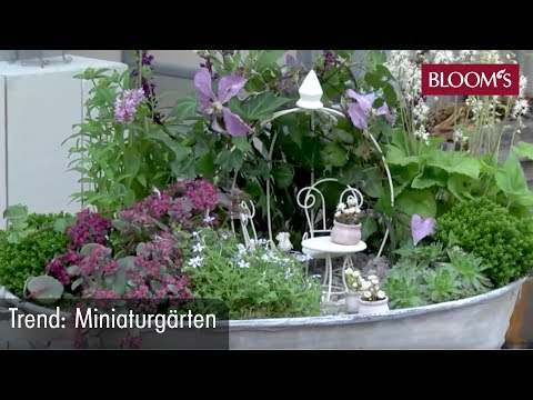 miniaturg rten der neue trend f r balkon und terrasse youtube