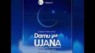 Chege Ft Maka Voice - Damu Ya Ujana (Official Audio)