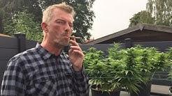 UK's Bart Hissink Treats Brain Injury with Cannabis