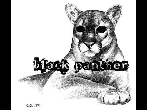 Клип: Черная пантера