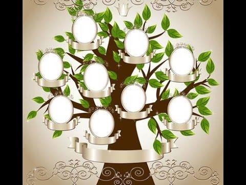 Curso de ingles arbol genealogico hogar tv por juan for Como poner fotos en la pared