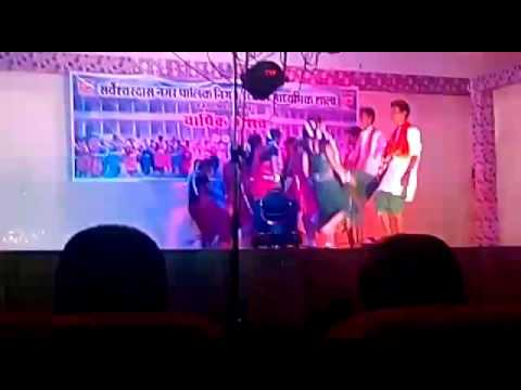 annual function   Rajnandgaon