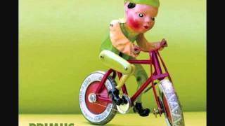 Primus- Jilly
