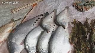 ເລາະຕະຫຼາດແລງໜອງບົກ ເມືອງ ໜອງບົກ ແຂວງ ຄຳມ່ວນ ♡ เลาะตลาดแลง หนองบก ไขมดแดง ปลาตอง...