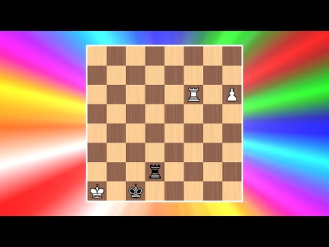 Rook hunts Rook  Cool Chess Puzzle 9