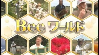 Beeワールド  ニュージーランドVol.1 「真紅の花 サザンラタハニー 篇」