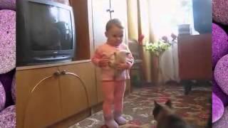 У кошки забрали котенка.