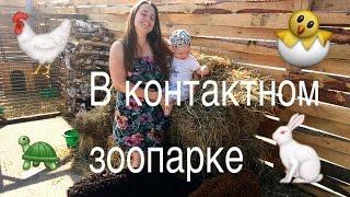 Контактный зоопарк в Нижнем Новгороде / LA(Недавно мы посетили классный контактный зоопарк) Делимся с вами впечатлениями) Делитесь видео с друзьями,с..., 2016-06-29T15:16:13.000Z)