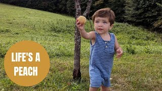Couple who planted peach tree capture moment son ate peach from it nine years later