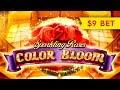 Sparkling Roses Color Bloom Slot - NICE SESSION!
