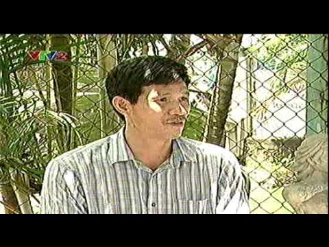 Kỹ thuật nuôi cá sấu nước ngọt - Trung tâm Thông tin Khoa học và Công nghệ Đà Nẵng