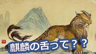 西島秀俊と二宮和也 映画『ラストレシピ 麒麟の舌の記憶』の 「麒麟の舌」...