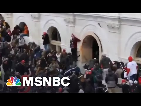 A Reflection On 100 Days Since The Capitol Riot | Way Too Early | MSNBC