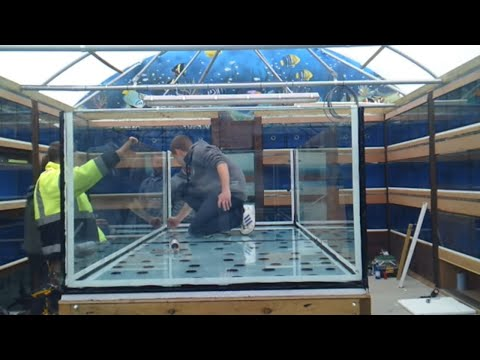 Building a monster aquarium 700gal (Unedited)