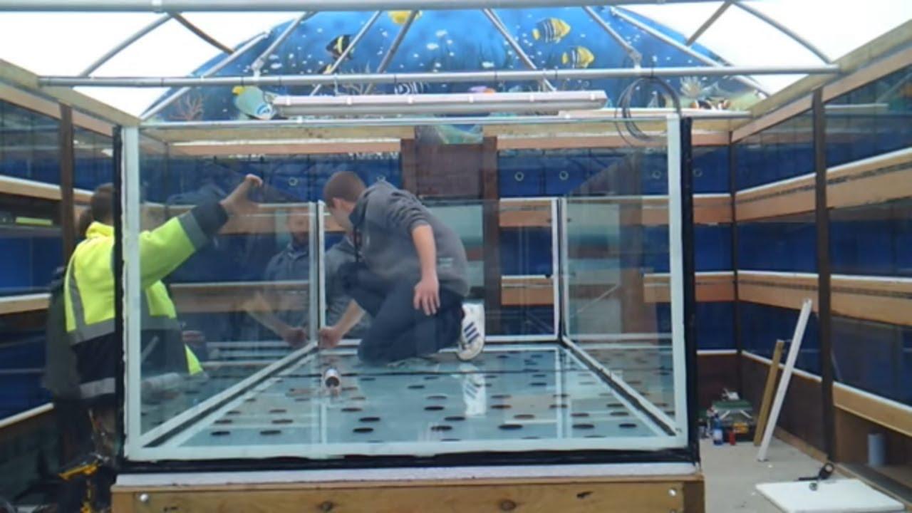 building a monster aquarium 700gal unedited youtube