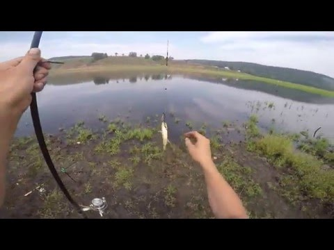 рыбалка на карася на подсопках