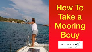 #mooringaboat #mooringbouys How To Take a Mooring Bouy. NEVER easy! Sailing Ocean Fox