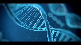 dokumentarfilm 2106 Die Ursprünge der Gene, woher wir kommen  doku 2016