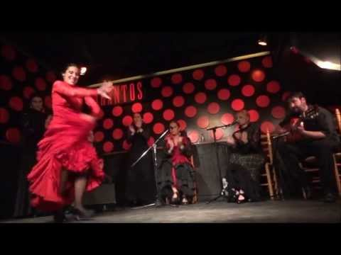 Amazing Flamenco Show in Los Tarantos Barcelona