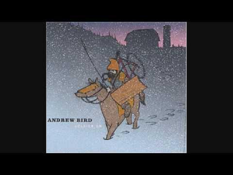 Andrew Bird - Sic of Elephants