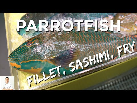 Japanese Parrotfish | Clean & Cook 2 Ways | Okinawa Street Food
