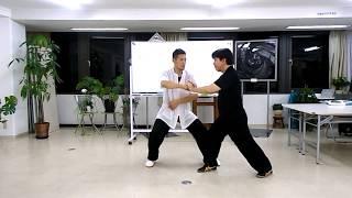 【武術的身体操作】陳式太極拳「金剛搗碓」&上・下・横への勁力の伝達