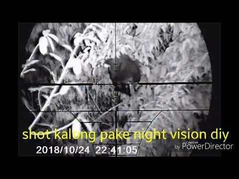 shot kalong  malam pake night vision dy