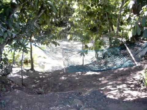 Jamaica 2003 Photoshow