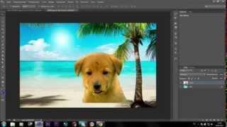 Урок Как быстро заменить фон у картинки в Photoshop CS6 Уроки Фотошопа