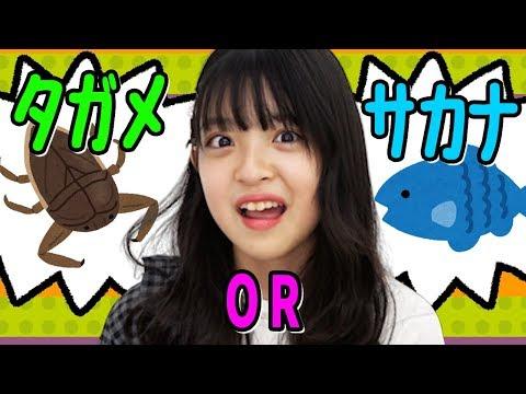 【検証】この世にタガメと魚にしか食べ物がなかったらみなみはどっちを選ぶ?