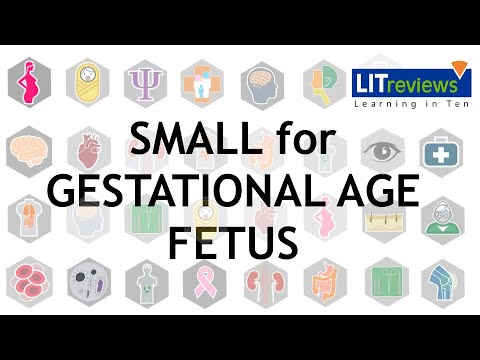 How best to diagnose and treat the small for gestational age fetus